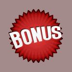bonus-icon-5